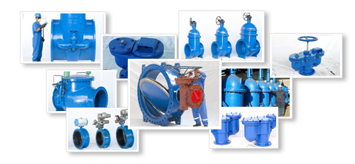 DUCTILE IRON INDUSTRIAL VALVE